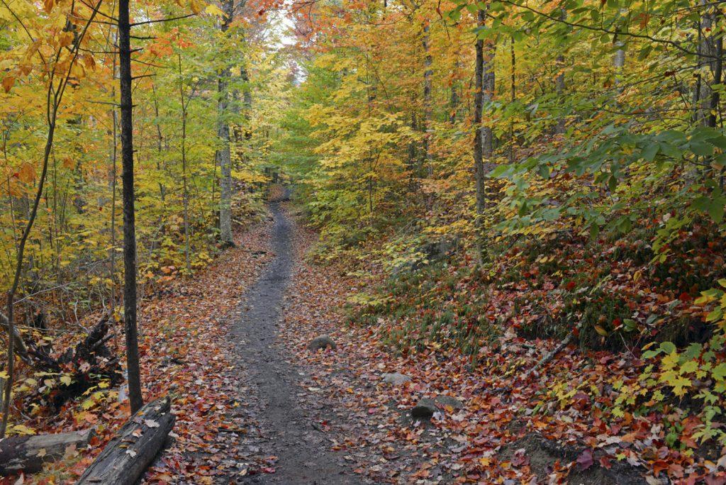 hiking trails near me